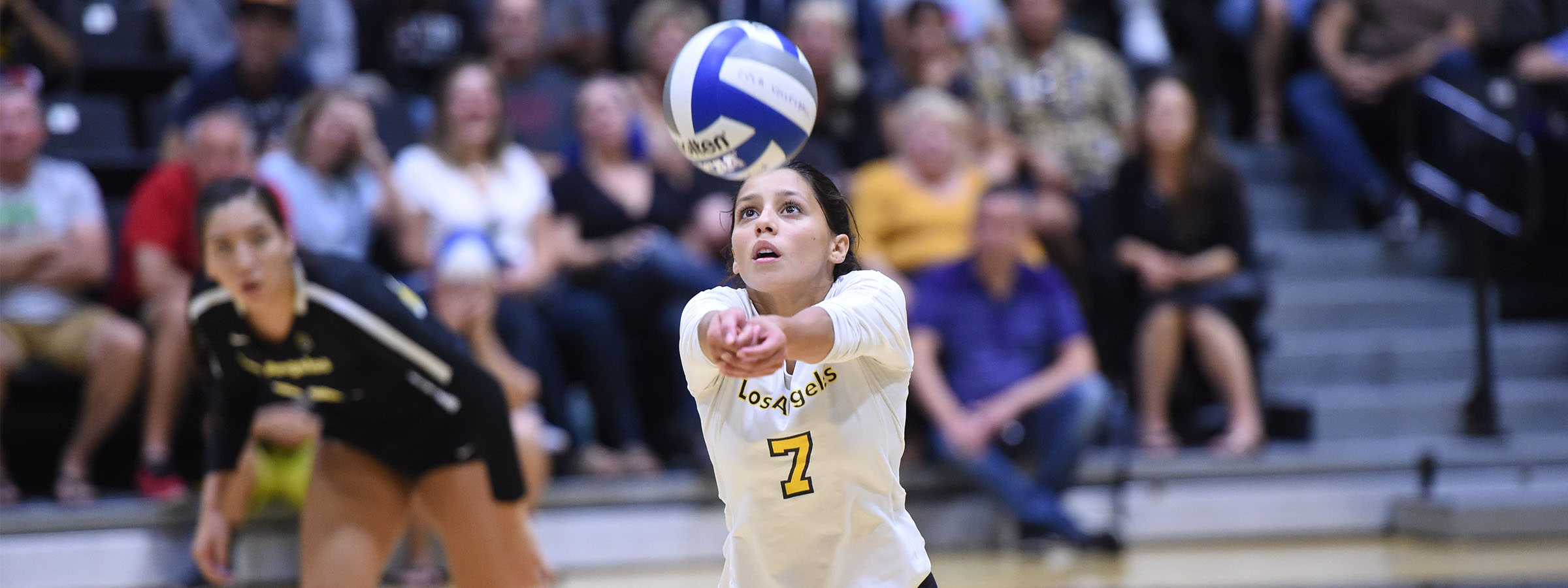 Volleyball player digging ball